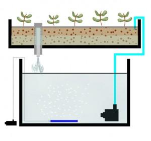 A basic flood and drain setup diagram
